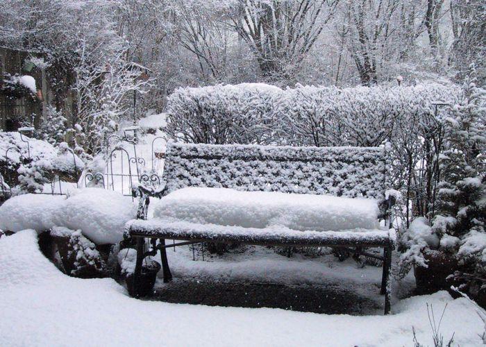 """Unser """"Wintergarten"""" - Ich glaub' es geht schon wieder los"""