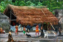Unser zu Hause im Regenwald Dorf