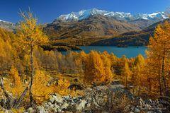Unsere Herbstferien