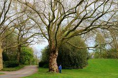 Unsere kleinen Bäume im Stadtgarten Gelsenkirchen ;-)