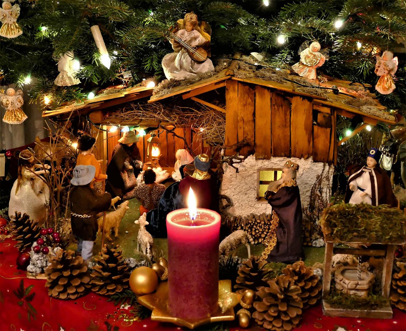 unsere krippe unterm weihnachtsbaum foto bild. Black Bedroom Furniture Sets. Home Design Ideas