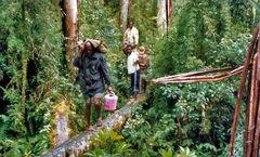 Unsere Träger im Urwald der Korowai