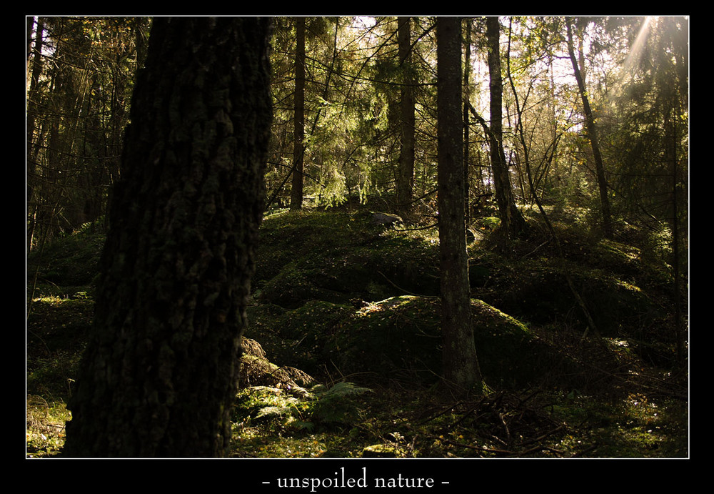 unspoiled nature