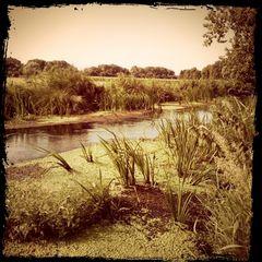 Unten am Fluß