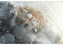 Unter dem Eis ist Leben...