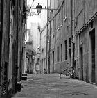 Unter den Dächern Pisa's