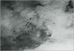 Unter den Wolken ...