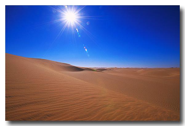 Unter der Heissen Sonne