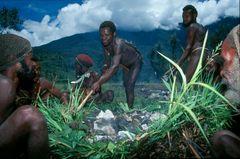 unter Papuas