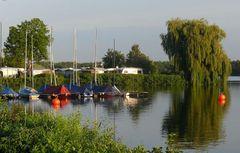 Unterbacher See in Düsseldorf (5)
