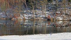 Unterbrochene Spieglung in Eis und fließendem  Wasser...