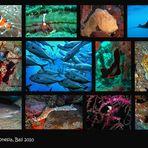 Unterwasserwelt Indonesien