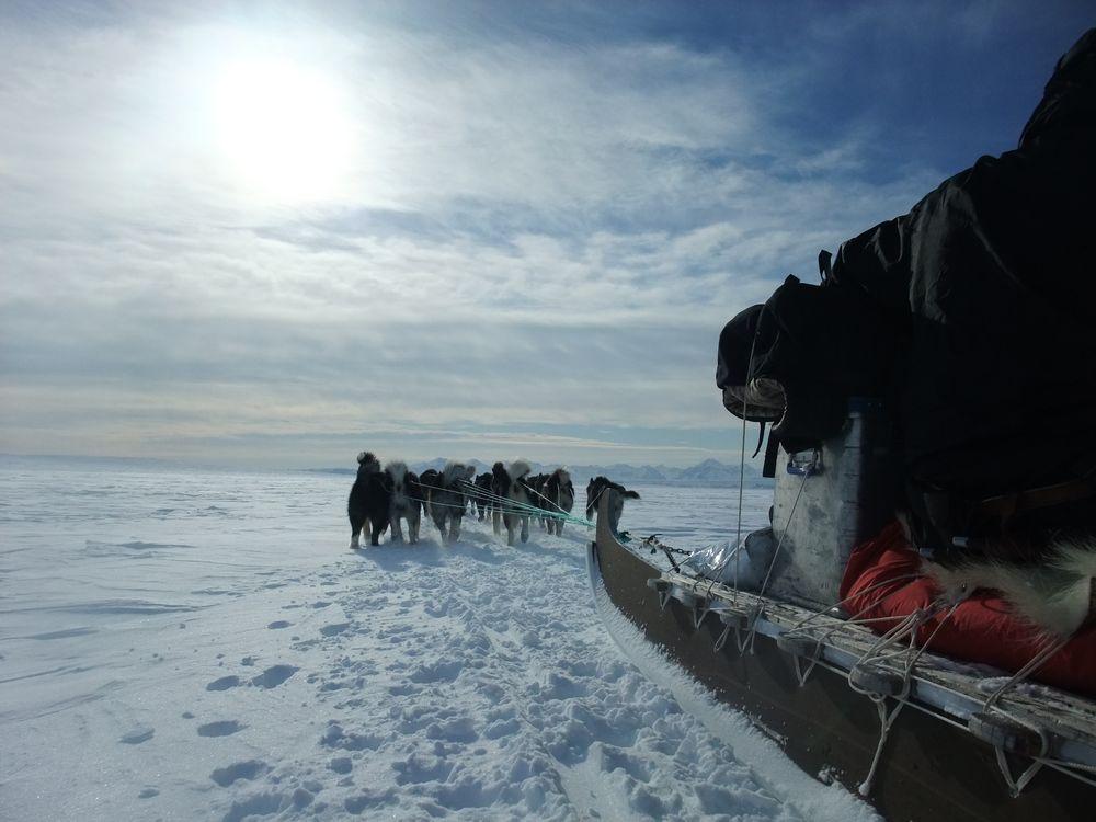 Unterwegs auf dem Hundeschlitten