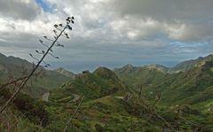 Unterwegs im Anaga Gebirge