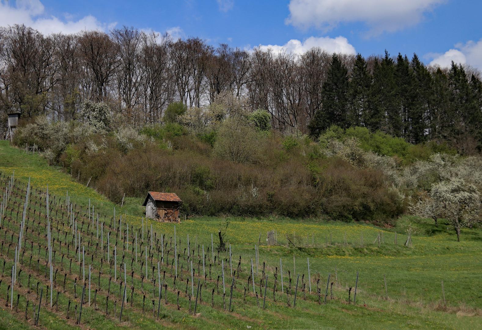 Unterwegs im Heilbronner Land