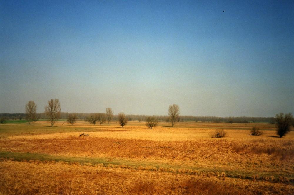 Unterwegs im Komitata Borsod nahe Nyíregyháza [2007|03|14]