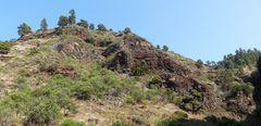 Unterwegs im Norden von La Palma....