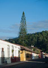 Unterwegs in Antigua ~ 6 ~