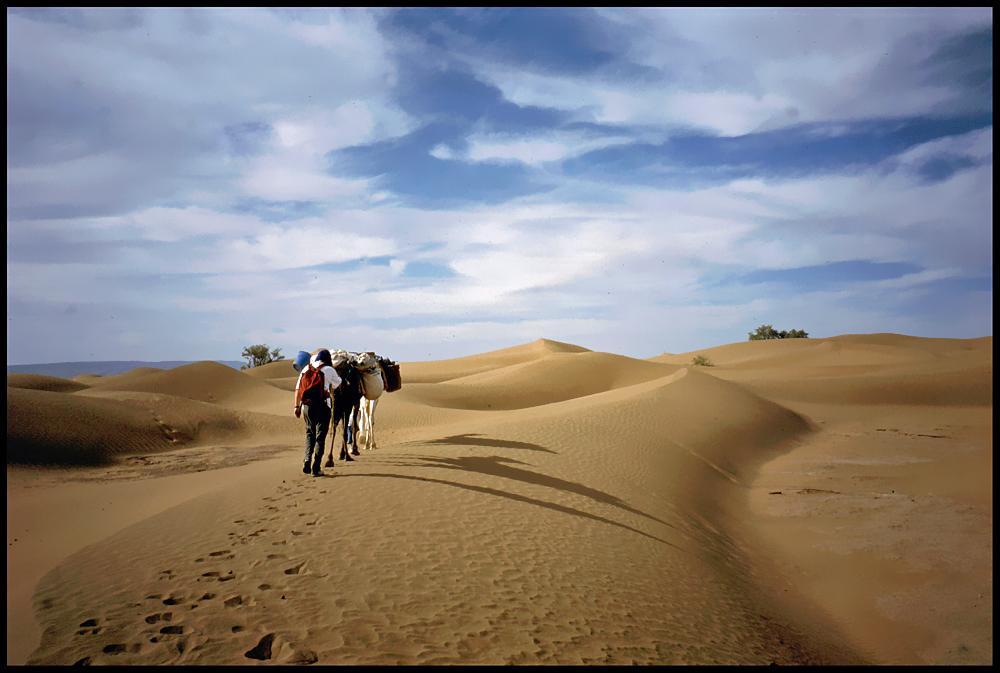 Unterwegs in der Sahara