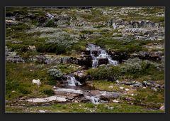 Unterwegs in Norwegen III