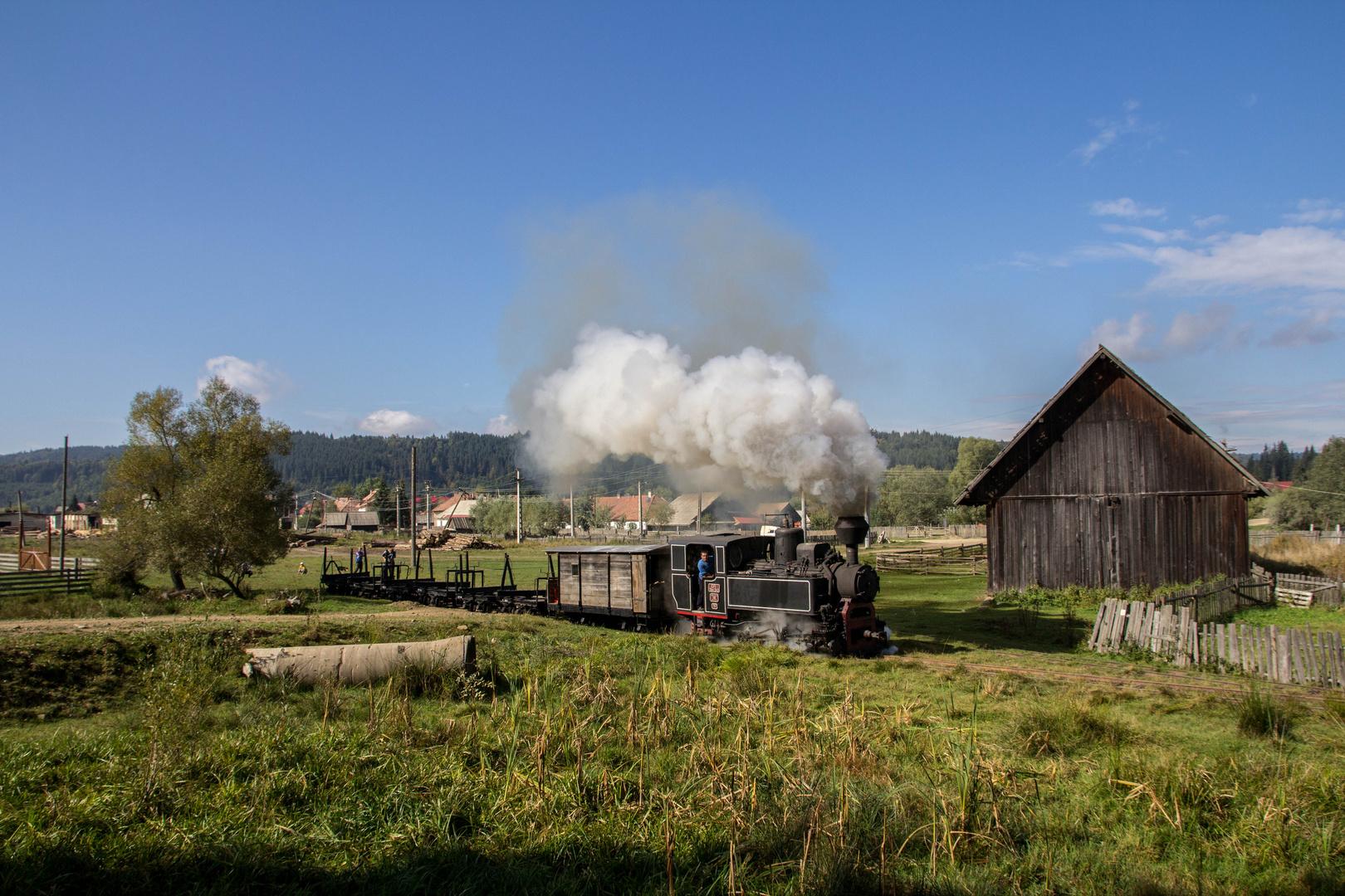 Unterwegs in Rumäniens Wäldern III