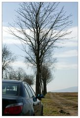 Unterwegs zum Donnersberg