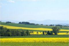 Unterwegs....und das Gelbe in der Landschaft