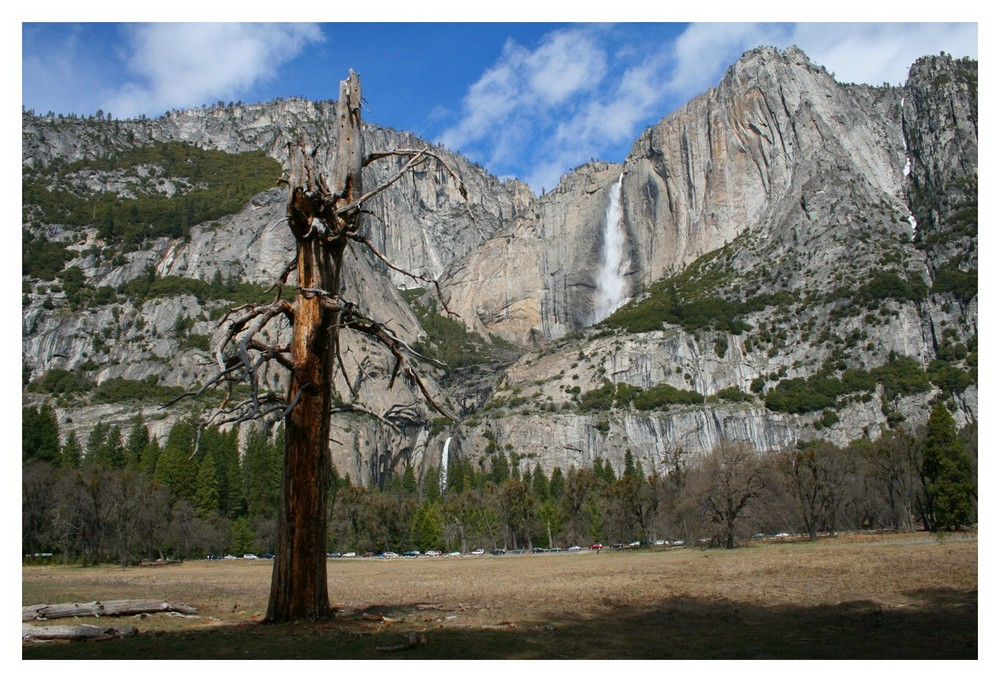 """Upper and Lower Yosemite Falls"""