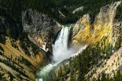 Upper Falls of the Yellowstone    DSC_3622-2