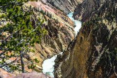 Upper Falls of the Yellowstone III   DSC_3633-2