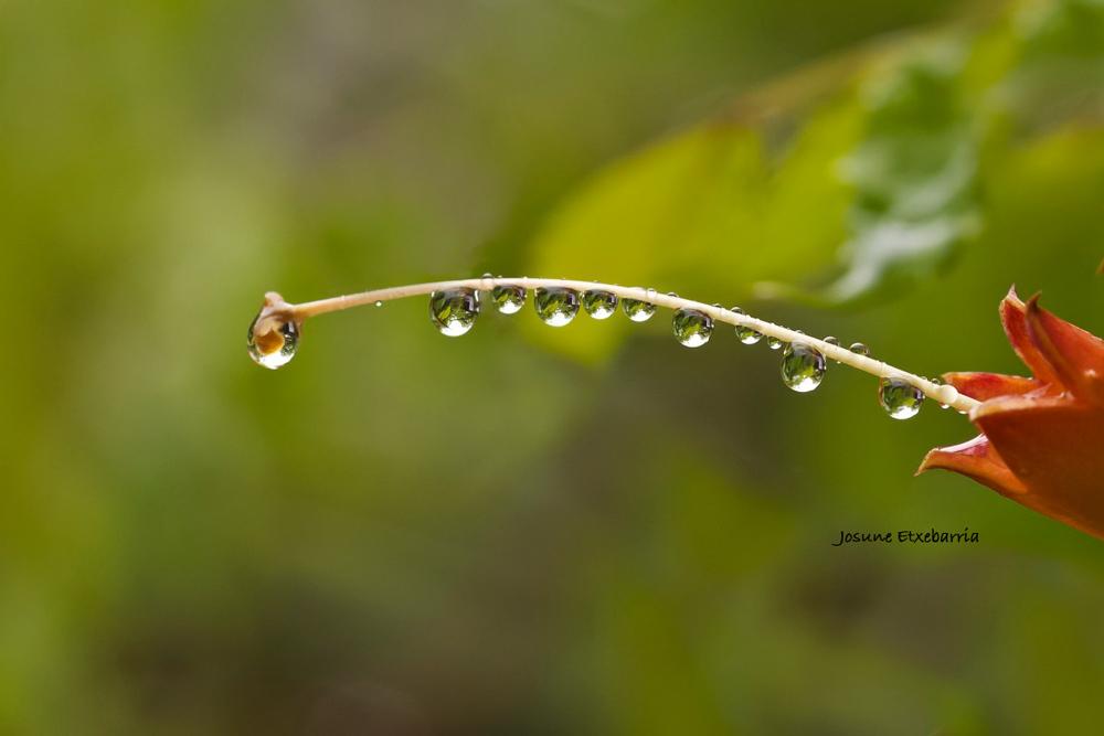 Ur tantak / Gotas de agua (Dedicada a Amado Calvo)