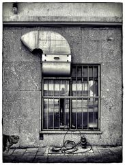 Urban Air mit halbem Mops