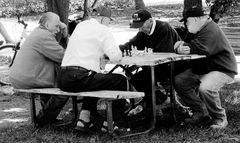 urban chess - the oldtimers