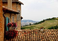 Urbino (1)