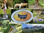 Urlaub in Tirol , zur jeder Jahreszeit