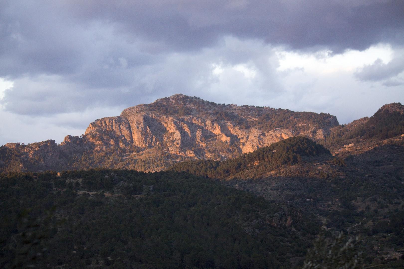 Urlaub März 2010 auf Mallorca.