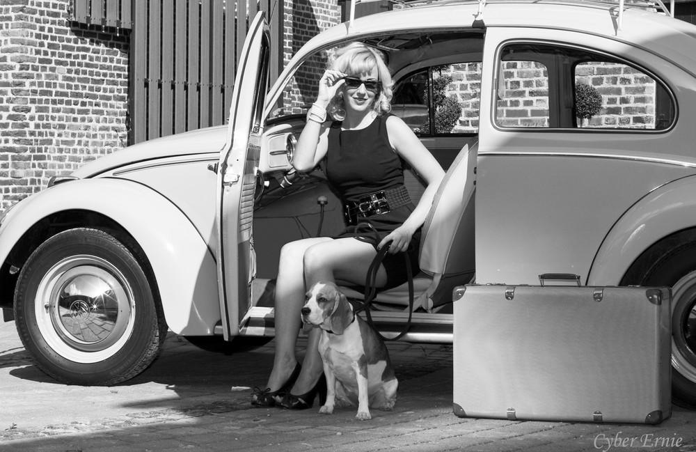 Urlaub mit Bug & Beagle
