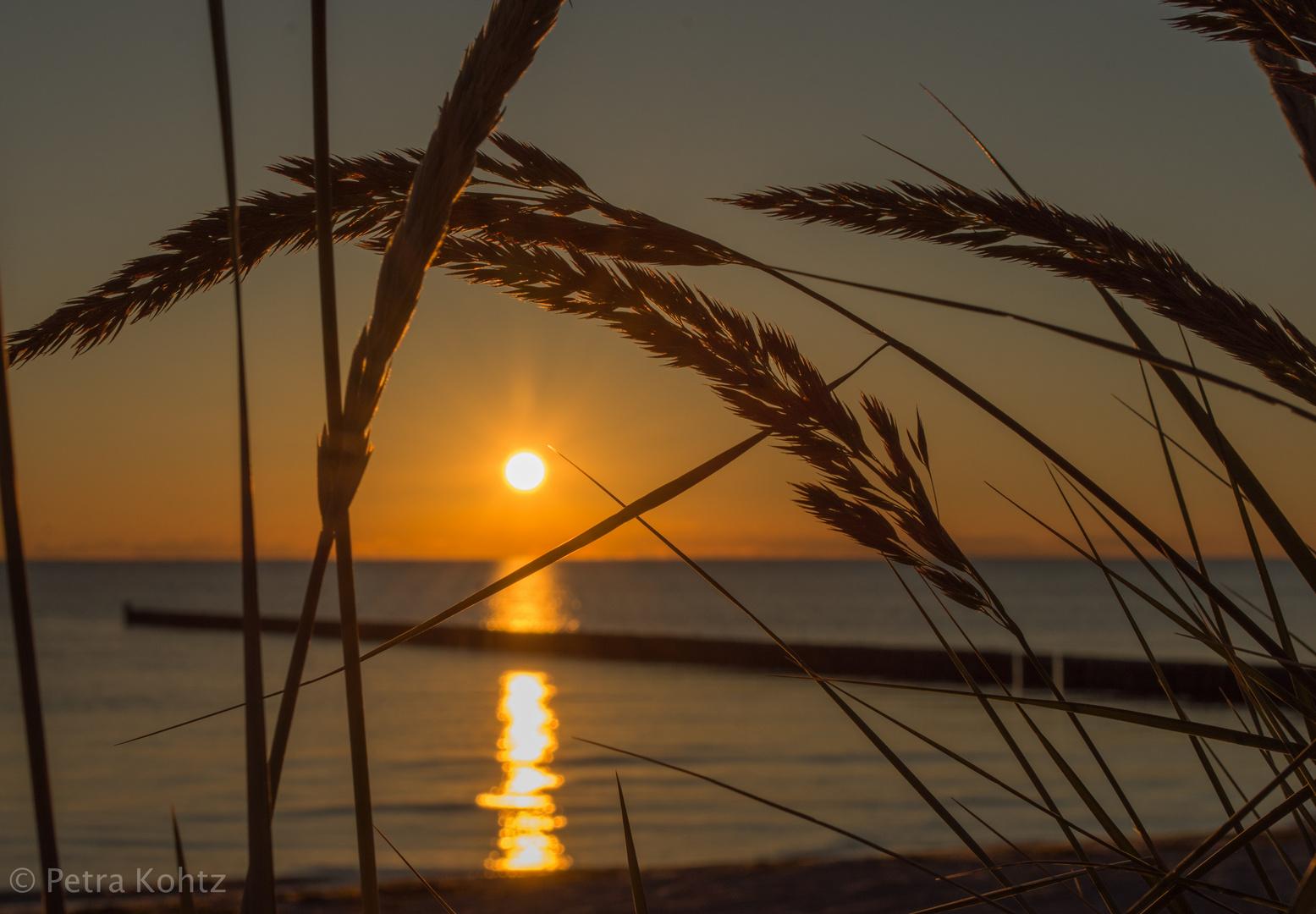 Urlaubsgrüsse von Hiddensee