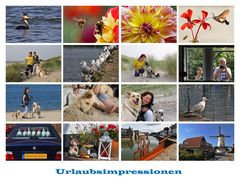 Urlaubsimpressionen vom Hollandurlaub