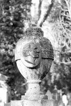 Urne mit Bild