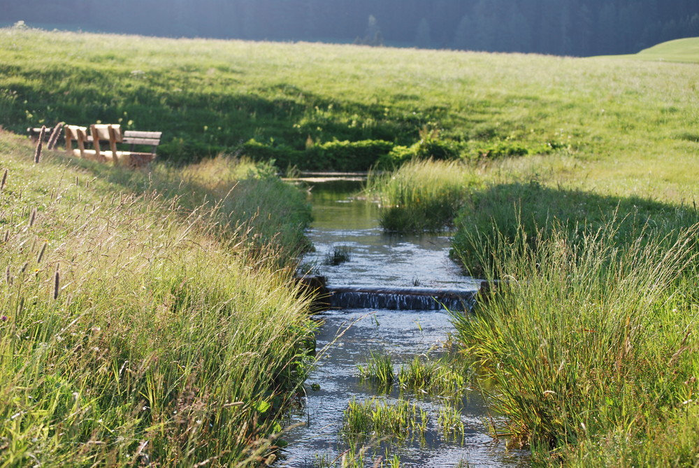 Ursprungsquelle_2 Naturpark Zirbitzkogel Grebenzen