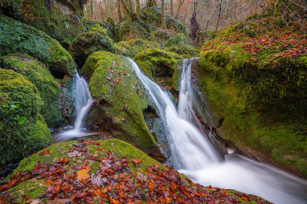 urwald in der schweiz foto  bild  landschaft bach