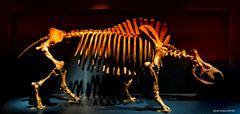 Urzeit Tier