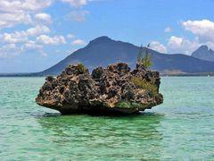 Urzeitgestein Mauritius