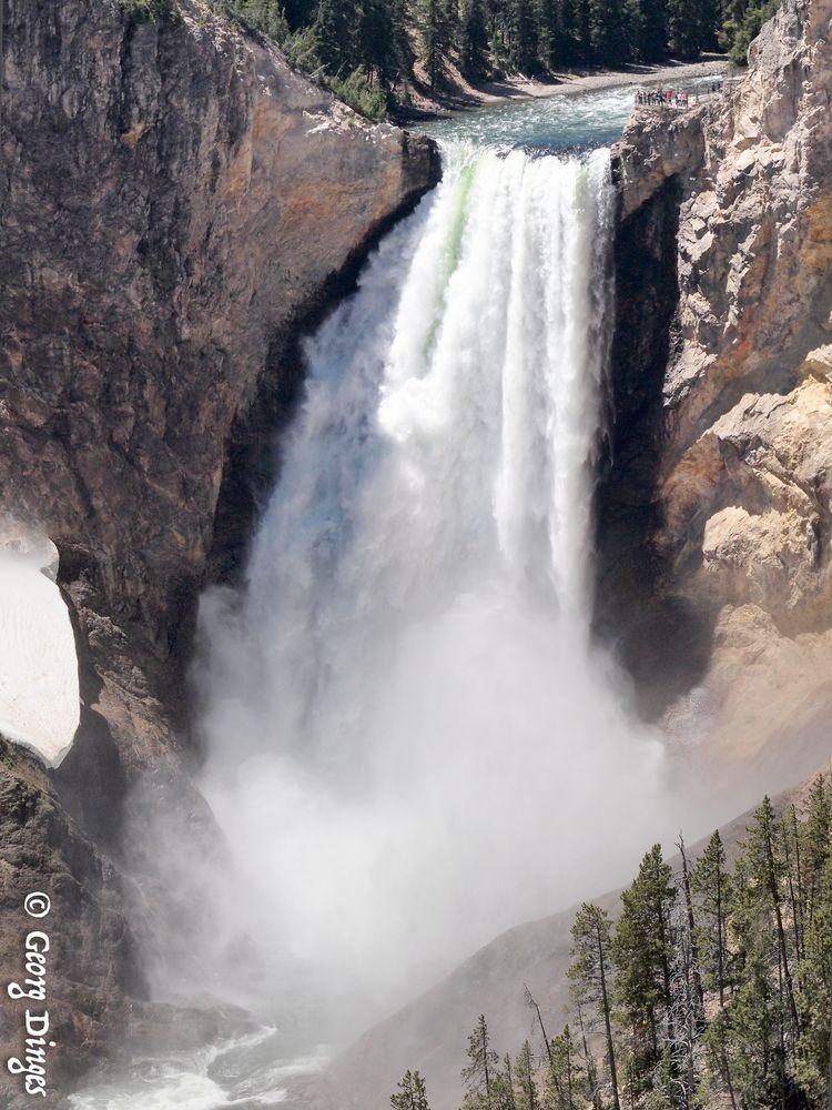 USA YNP Yellowstone lower fall 2014