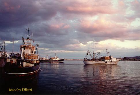 Uscita barche al tramonto per la pesca