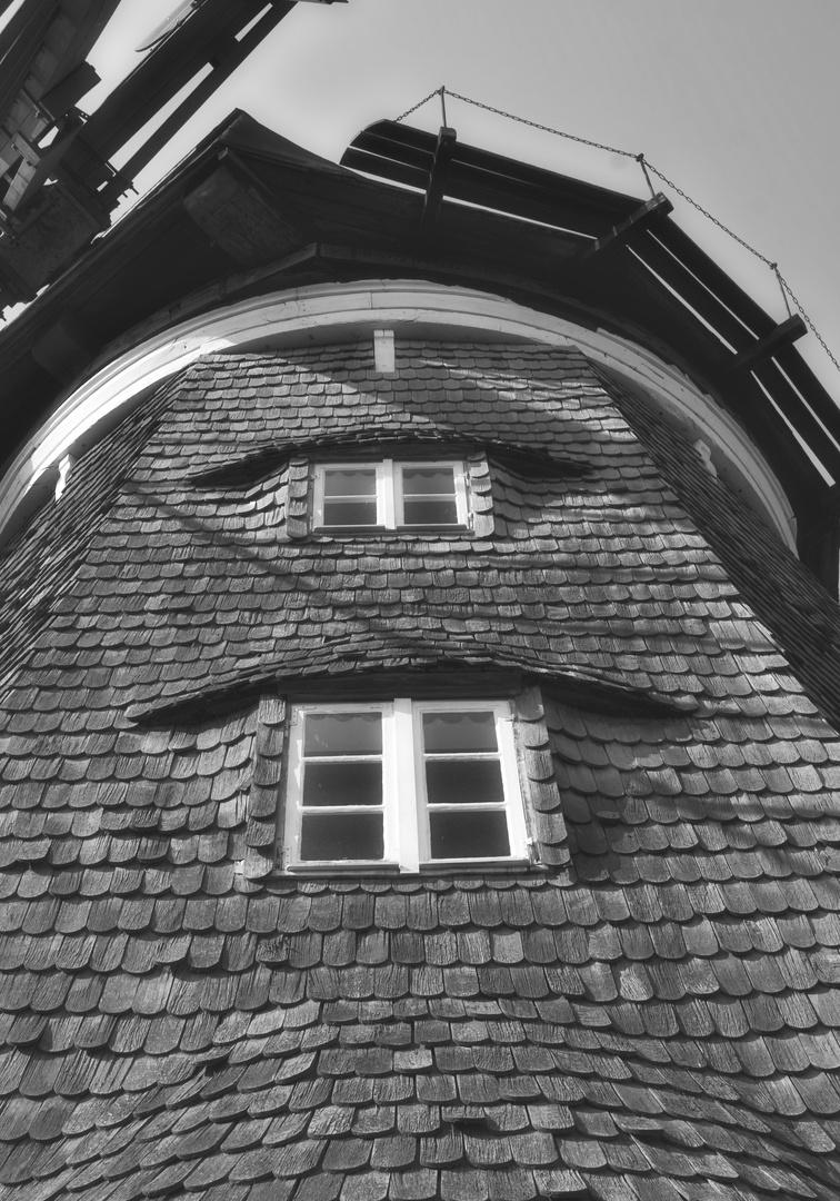 Usedom, Holländermühle_1