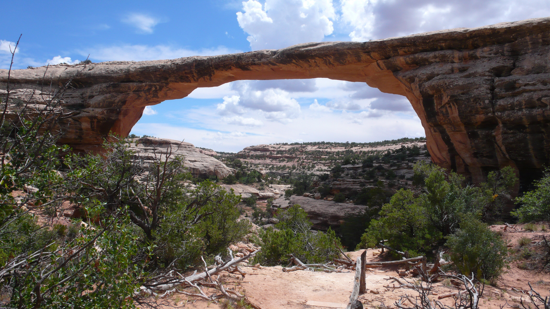 Utah - Natural Bridges National Park