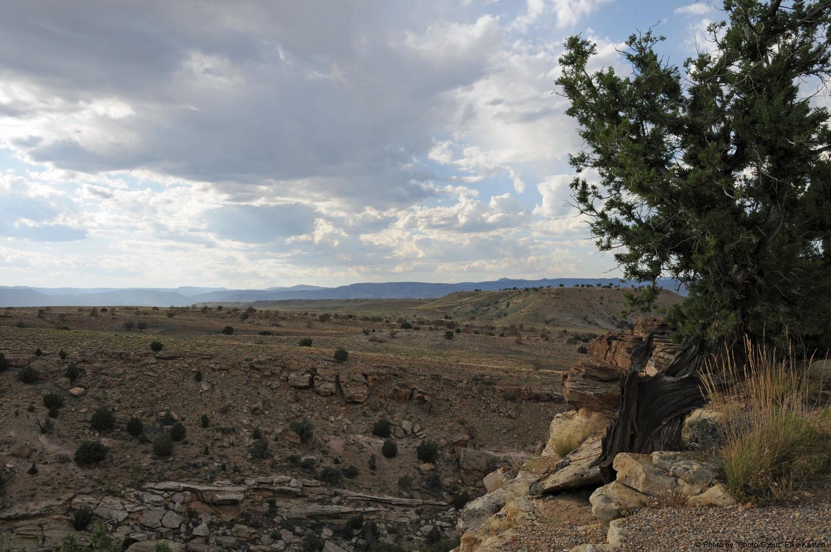 Utah's Wüste II