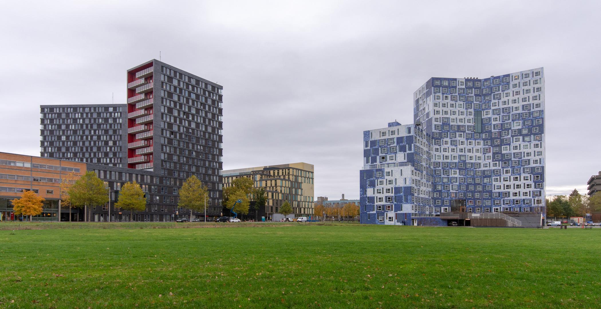 Utrecht Uithof - Cambridgelaan - 01